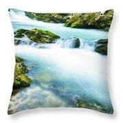 The Soteska Vintgar Gorge, Gorje, Near Bled, Slovenia Throw Pillow