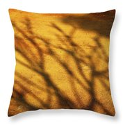 The Soundlessness Of Nature Throw Pillow