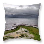 The South End Throw Pillow