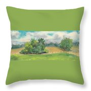 The South Field Throw Pillow