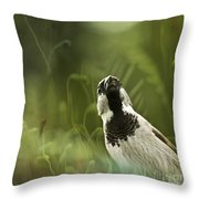 The Sparrow Throw Pillow