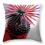 The Spell Of The Cactus Throw Pillow