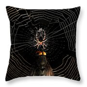 The Spider  And The Fly Throw Pillow