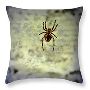 The Spider Waits Throw Pillow