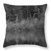 The Spike Throw Pillow by Jeni Gray