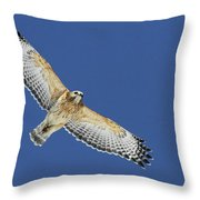 The Spirit Of The Hawk Throw Pillow