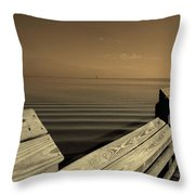 The Spot Throw Pillow