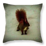The Squirrel In The Winter Garden Throw Pillow