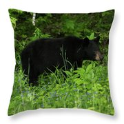 The Standoff Throw Pillow
