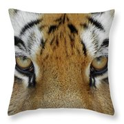 The Stare Throw Pillow