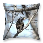 The Starling Throw Pillow