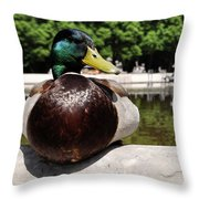 The Stately Duck Throw Pillow
