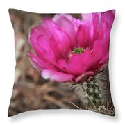 The Stigma Of Beauty II Throw Pillow