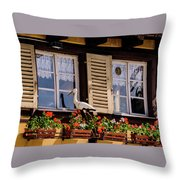The Stork Has A Delivery - Colmar France Throw Pillow