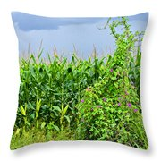 The Storm II Throw Pillow