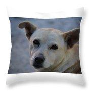 Zaguate Throw Pillow