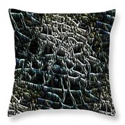 The Stream Bed Throw Pillow