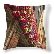 The Street Lamps Throw Pillow