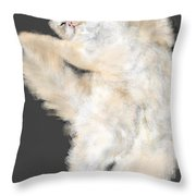 The Stretching Cat Throw Pillow