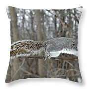 The Stronger Is My Father Throw Pillow