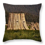 The Stumps Have Eyes Throw Pillow