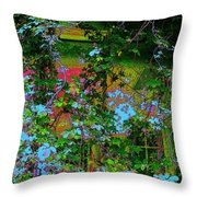 The Sun Catcher Throw Pillow