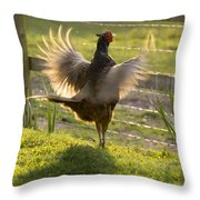 The Sun In My Wings Throw Pillow