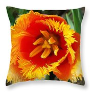 The Sun In You Throw Pillow
