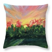The Sun Is Setting Throw Pillow