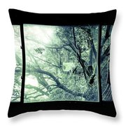 The Sun Moves The Days. Throw Pillow