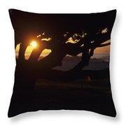 The Sun Peeks Through The Branches Throw Pillow