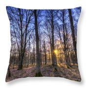 The Sun Ray Forest Throw Pillow