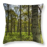The Sun Touched Forest Throw Pillow