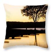 The Sunet Throw Pillow by Danielle Allard