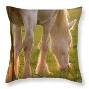 The Sunlight Caught In The Horse Tail Throw Pillow
