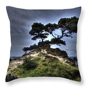The Sun's Retreat Throw Pillow