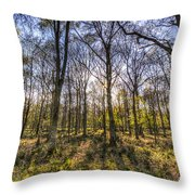 The Sunset Forest Throw Pillow