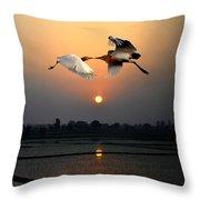 The Sunset Kiss Throw Pillow