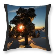 The Sunset Tree  Throw Pillow