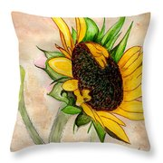The Sunshine Of God's Love Throw Pillow