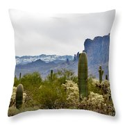 The Superstitions  Landscape Throw Pillow