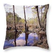 The Swamp Throw Pillow