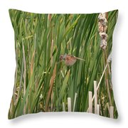 The Swamp Sparrow In-flight Throw Pillow