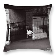 The Swan Story Throw Pillow