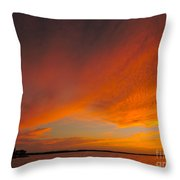 The Sweep Throw Pillow