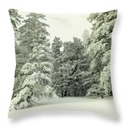 The Sweep Of Snow Throw Pillow