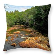 The Swift River In South Tamworth Throw Pillow