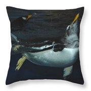 The Swim Throw Pillow