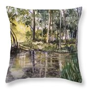The Swimming Hole  Throw Pillow