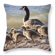The Swimming Lesson Throw Pillow